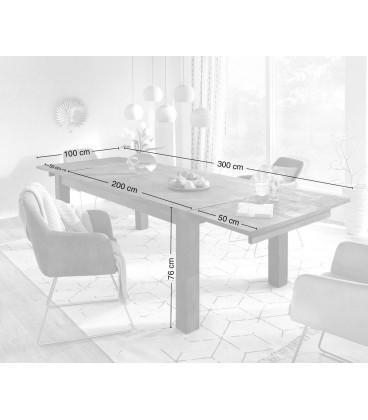 Jídelní Stůl Vida 200/300x100 cm Akácie Platina Rozkládací